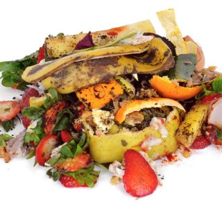 The Terrible Food Waste Dichotomy