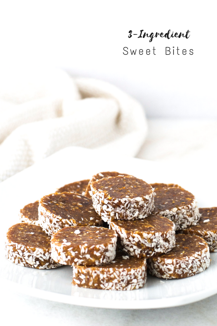 3-Ingredient Sweet Bites {Vegan, Grain Free}